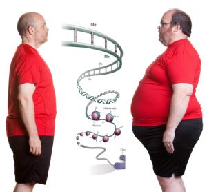 EpigeneticaMovimento